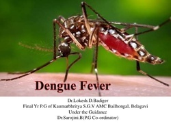 Dengue Fever Homeopathic Services