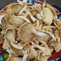 Maharashtra Dry Oyester Mushroom, Packaging Type: Pet Plastic box, Packaging Size: 200 gm to 10 kg