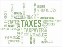 Chartered Accountant Audit Services