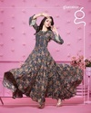 Long Fancy Gown