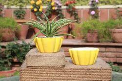 Ceramic Lotus Flower Planter