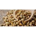 Dried Coriander Seed