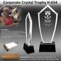 Corporate Crystal Trophy H-654