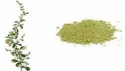 Sirupeelai Powder, Packaging Size: 1 kg