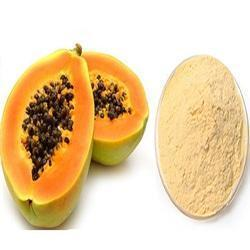 Papaya Extract Powder