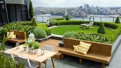 Terrace Stylish Garden Design Service