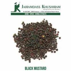 Jairamdass Khushiram Black Mustard/ Rai/ Brassica Nigra, Packaging Size: 50 Kg, Packaging Type: Bag
