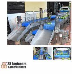 Vegetable and Fruit Washing Conveyor