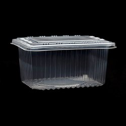Disposable Transparent Plastic Food Container