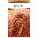 MOP Fertilizer