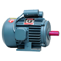 Rajlaxmi Foot Mounted Single Phase Motors