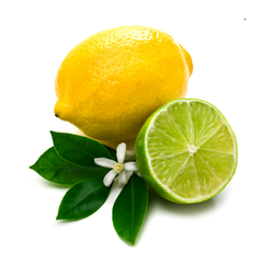 Citrus Fragrances For Laundry