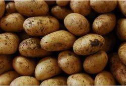 Potato(chipsona 1)