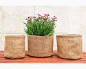 Jute Baskets for Plants