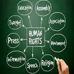 Human Rights PhD Thesis Writing Services