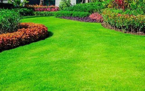 Grass Site Planning Valley Crest Landscape And Gardening Services ...