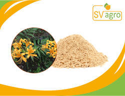 Galanthamine Hydrobromide Extract