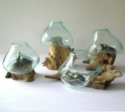 Gorden Planter Molten Glass On Driftwood Glass Terrariums Plant, Size: 12 Inch