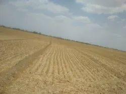 80 Bigha Land for sale on ajmer road jaipur