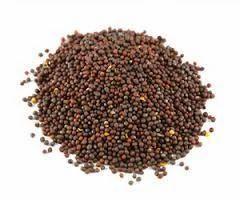 Calensa Mustard Powder