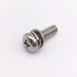 Philips Combination Screw