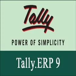 Tally Software Maintenance Services