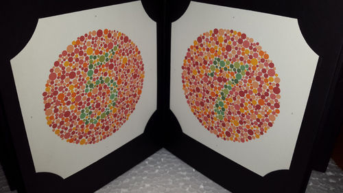 Ishihara Color Blindness Test Book 38 Plates, Ishihara Color Testing ...