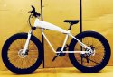 Mercedes Benz White Shark Fat Tyre Cycle