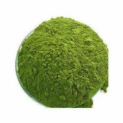 Kuppaimeni Nettle Dry Powder (Acalypha Indica) (Copper Leaf Dry Powder)