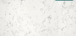 Carrara White Quartz Countertop