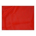 Red Net Fabric