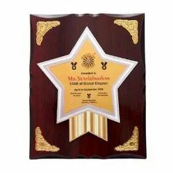 MG-860 Promotional Award