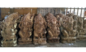 Lord Ganesha Wooden Statues