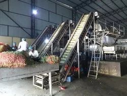 Green Peas Processing Plant