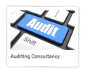 Auditing Consultancy Service