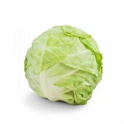 Fresh Cabbage, No Preservatives, Packaging: Plastic Bag or Polythene Bag