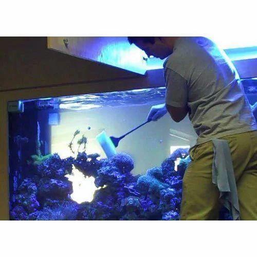 561e7bf7e25 Aquarium Cleaning Service in Dadar