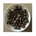 Wing Less Edible Moringa Seeds
