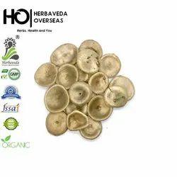 Kuchla (Strychnos Nuxvomica), Pack Size: 1 Kg, HERBAVEDA