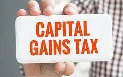 Capital Gain Tax Service, Company
