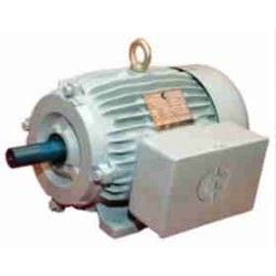 Induction TEFC Electric Motors