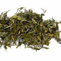 Healthy Tea Leaves, Packaging Type: Packet