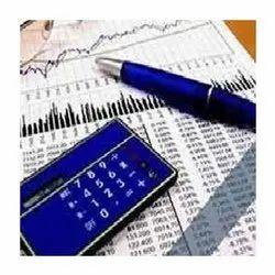 Individual Consultant Statutory Audit Service, Local Area