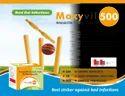 Amoxicillin and Lactobacillus Capsules