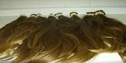 100% Raw Indian Human Golden Colour Hair King Review