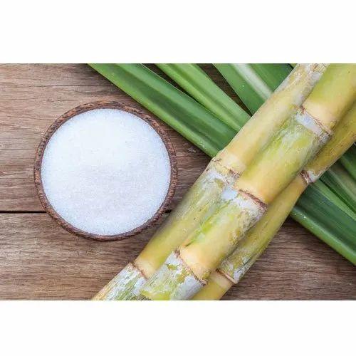 Sugar Process Enzyme