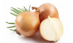 A Grade Maharashtra Onion, For Human Consumption, Net Bag