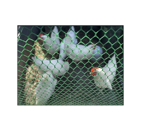 Industrial Nets - Fencing Net Manufacturer from Nagpur