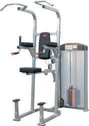 Weight Machines Cosco Chin / Dip Combo CSW15
