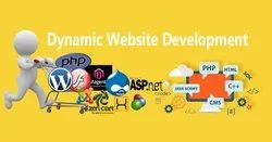 Dynamic Website Development, With 24*7 Support